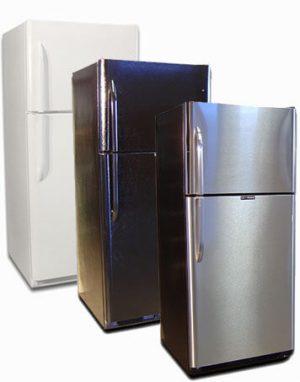 21 Cu Ft Refrigerator